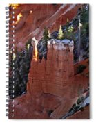 The Lonely One Spiral Notebook