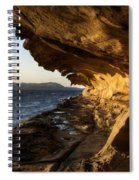 The Malaspina Galleries Spiral Notebook