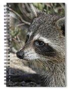 The Masked Bandit Spiral Notebook