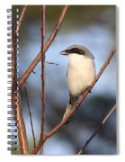 The Masked One Spiral Notebook