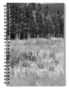 The Meadow Black And White Spiral Notebook