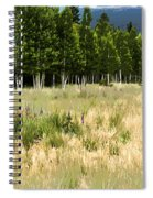 The Meadow Digital Art Spiral Notebook