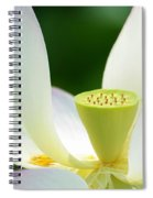 The Middle Of A Lotus Spiral Notebook