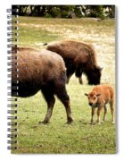 The Mighty Bison Spiral Notebook