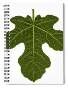 The Mission Fig Leaf Spiral Notebook