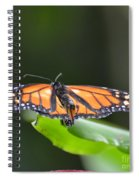 The Monarch Spiral Notebook