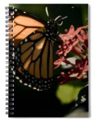 The Morning Monarch Spiral Notebook