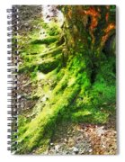The Moss Covered Roots Spiral Notebook