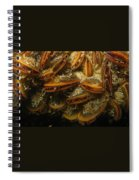 The Mussel Group Spiral Notebook