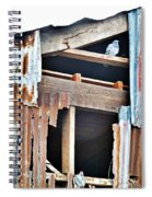 The Nervous Pigeon  Spiral Notebook