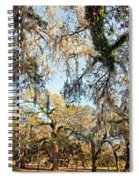 The Oaks Of City Park Spiral Notebook