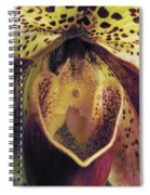 The Orchid Center Spiral Notebook