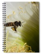 The Overloaded Bee Spiral Notebook