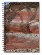 The Painted Desert  8018 Spiral Notebook