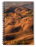 The Painted Dunes Spiral Notebook