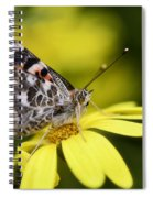 The Painted Lady And The Daisy  Spiral Notebook