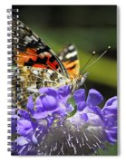 The Painted Lady Butterfly  Spiral Notebook