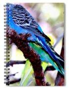 The Parakeet Spiral Notebook