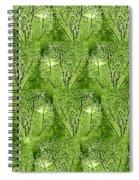 The Park Spiral Notebook