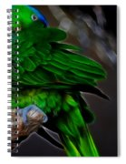 The Parrot Fractal Spiral Notebook