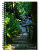 The Path To Iron Creek  Spiral Notebook