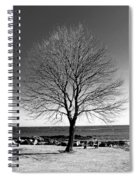 The Perfect Tree Spiral Notebook