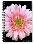 The Pink Flower Spiral Notebook