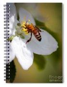The Pollinator Spiral Notebook