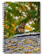 The Poser IIi Spiral Notebook