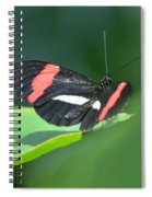 The Postman Takes Flight Spiral Notebook