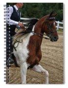 The Prance Spiral Notebook