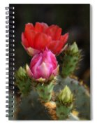 The Prickly Beauty  Spiral Notebook