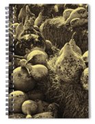The Produce Of The Earth In Sepia Spiral Notebook