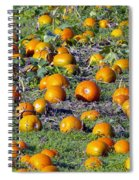 The Pumpkin Patch Spiral Notebook