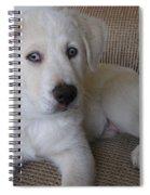 The Puppy Spiral Notebook