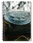 The Red Eared Slider Spiral Notebook