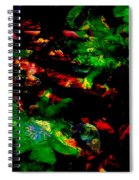 The Red Path Spiral Notebook
