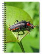 The Rednecked Bug- Close Up 2 Spiral Notebook