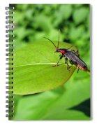 The Rednecked Bug On The Leaf Spiral Notebook