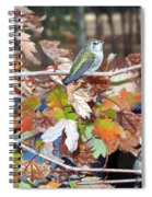 The Resting Tree Spiral Notebook