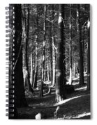The Road In Spiral Notebook