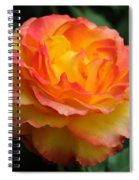 The Rose 2 Spiral Notebook