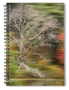 The Running Tree Spiral Notebook
