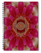 The Sacred Orchid Mandala Spiral Notebook