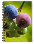 The Same Bush Spiral Notebook