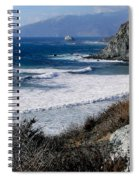 The Sea Squirrel Spiral Notebook