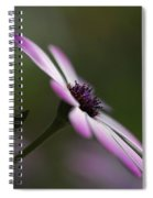 The Serenity Of Spring  Spiral Notebook