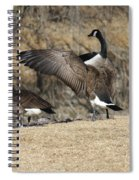 The Show Off Spiral Notebook
