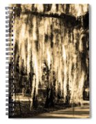 The Spanish Moss Spiral Notebook