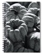 The Squash Harvest In Black And White Spiral Notebook
